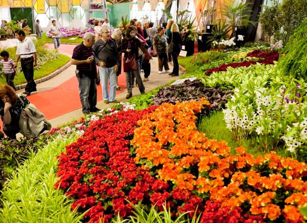 Fiesta de la Flor 2019